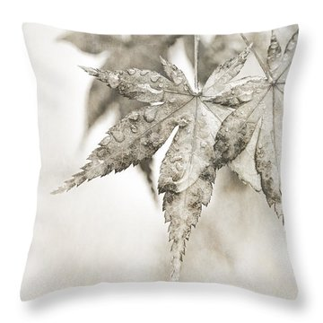 One Misty Moisty Morning Throw Pillow