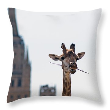 One More Bite To Outgrow The Tallest 4 Throw Pillow by Alexander Senin