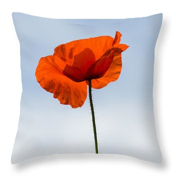 One Poppy Throw Pillow by Anne Gilbert