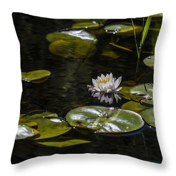 One Quiet Afternoon Throw Pillow