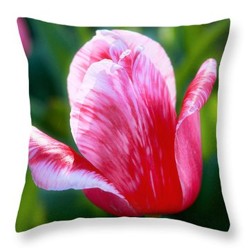 One Singular Sensation Throw Pillow by Joan Bertucci