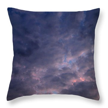 Finally It Rained In Texas Throw Pillow by Connie Fox