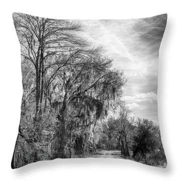 Throw Pillow featuring the photograph One The Levy by Howard Salmon