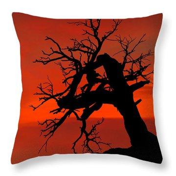 One Tree Hill Silhouette Throw Pillow by Greg Norrell