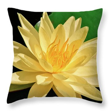 One Water Lily  Throw Pillow by Ed  Riche