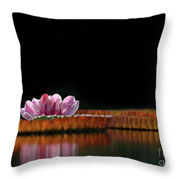 One Water Lily Throw Pillow by Sabrina L Ryan