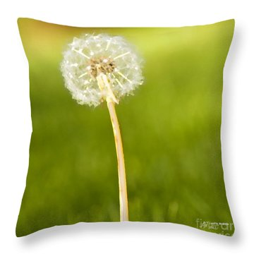 Throw Pillow featuring the digital art One Wish  by Artist and Photographer Laura Wrede