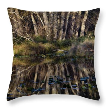 O'neil Lake Throw Pillow by Robert Woodward