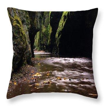 Onieata Gorge Throw Pillow by Jeff Swan