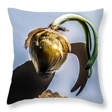 Onion Skin And Shadow Throw Pillow