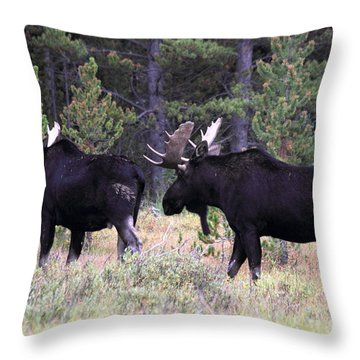 Only A Step Behind Throw Pillow