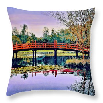 Throw Pillow featuring the photograph Only In Dreams by Wallaroo Images