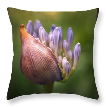 Throw Pillow featuring the photograph Only The Beginning by Rona Black