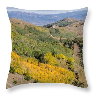 Only The Beginning Throw Pillow