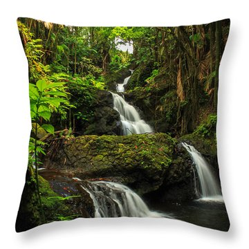 Onomea Falls Throw Pillow by James Eddy