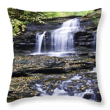 Onondaga Falls Throw Pillow