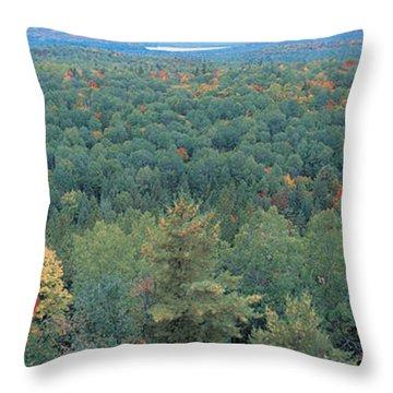 Ontario Canada Throw Pillow