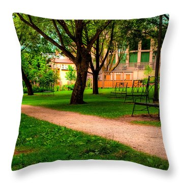 Throw Pillow featuring the photograph Ontario by Joseph Amaral