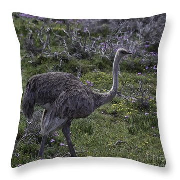 Onthe Move Throw Pillow
