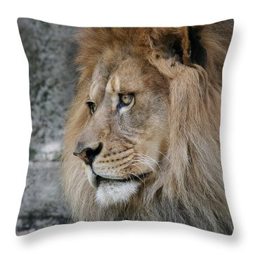 Throw Pillow featuring the photograph Onyo #11 by Judy Whitton