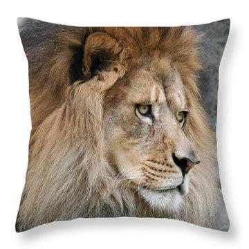 Onyo #13 Throw Pillow