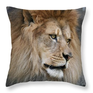 Throw Pillow featuring the photograph Onyo #4 by Judy Whitton