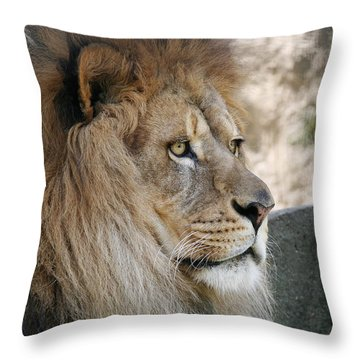 Onyo #8 Throw Pillow by Judy Whitton