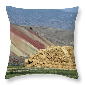 Oops - Something Shifted Throw Pillow