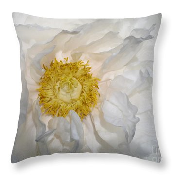 Throw Pillow featuring the photograph Open by Arlene Carmel