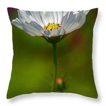 Throw Pillow featuring the photograph Open For All by Byron Varvarigos