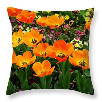 Open Throw Pillow by Rodney Lee Williams