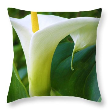 Open Your Heart Throw Pillow by Tiffany Erdman