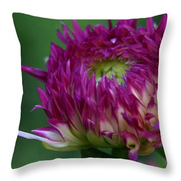 Opening Day Throw Pillow by Denyse Duhaime