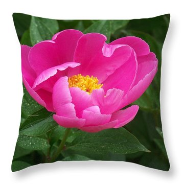 Throw Pillow featuring the photograph Peony  by Eunice Miller