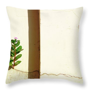 Optimism Pays Throw Pillow