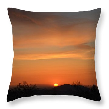 Orange-2 Throw Pillow by Tom Mansfield