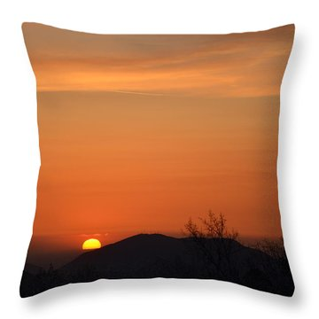 Orange-3 Throw Pillow by Tom Mansfield