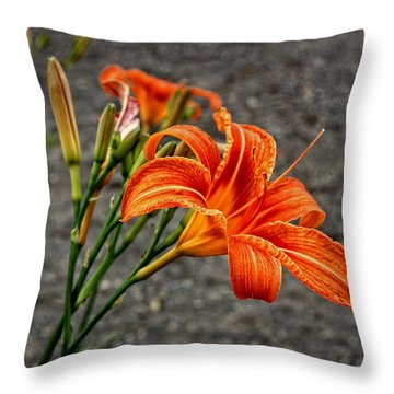 Orange And Green Throw Pillow