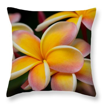 Orange And Pink Plumeria Throw Pillow by Roger Mullenhour