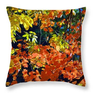 Orange And Yellow Throw Pillow by Kathleen Struckle