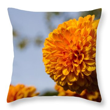 Orange Throw Pillow by Andreas Levi