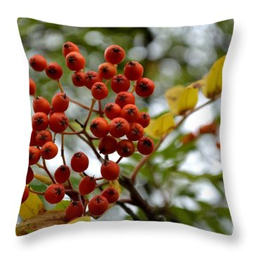 Orange Autumn Berries Throw Pillow