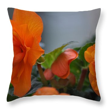 Orange Beauties Throw Pillow