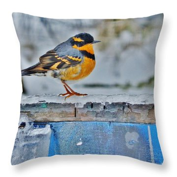 Orange Blue And Sleet Throw Pillow by VLee Watson