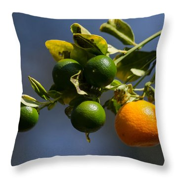 Orange Branch Throw Pillow