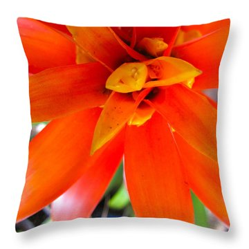 Orange Bromeliad Throw Pillow