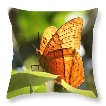 Orange Butterfly Throw Pillow by Jola Martysz