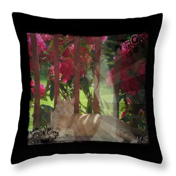 Orange Cat In The Shade Throw Pillow by Absinthe Art By Michelle LeAnn Scott