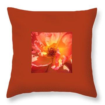 Portland Throw Pillows
