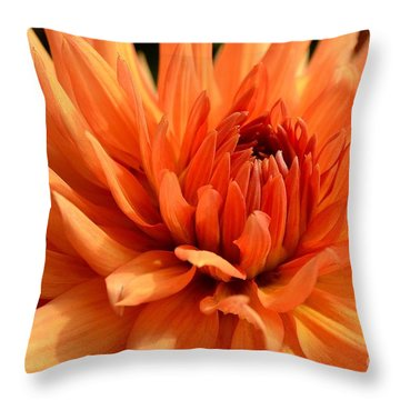 Orange Dahlia Throw Pillow by Scott Lyons